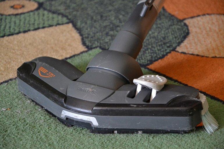 vacuum house against fleas